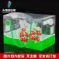 定制红枣包装盒 高端手提水果包装盒印刷 红枣吸塑礼品塑料包装盒