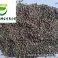 优质饲草/防风固沙植物种子 沙蒿籽——沙蒿种子(种植)